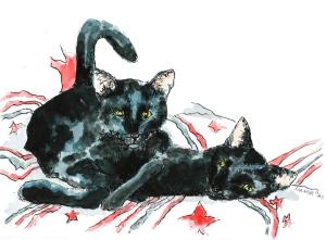 Black cat brotherhood