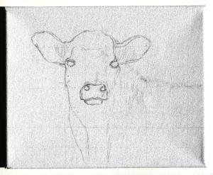 A calf, penciled oin