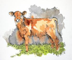 Brown watercolor calf