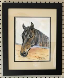 Urco, framed
